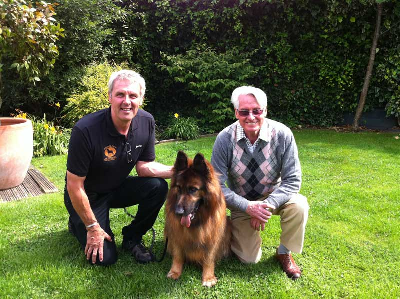 Residential Dog Training Devon
